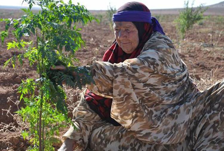 kadın köyü
