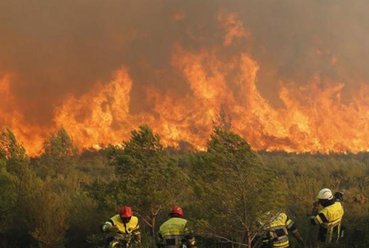 İspanya'da yangın: En az iki bin kişi tahliye edildi