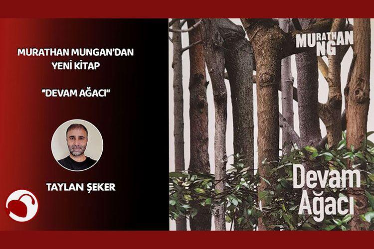 Murathan Mungan'dan yeni kitap: 'Devam Ağacı'